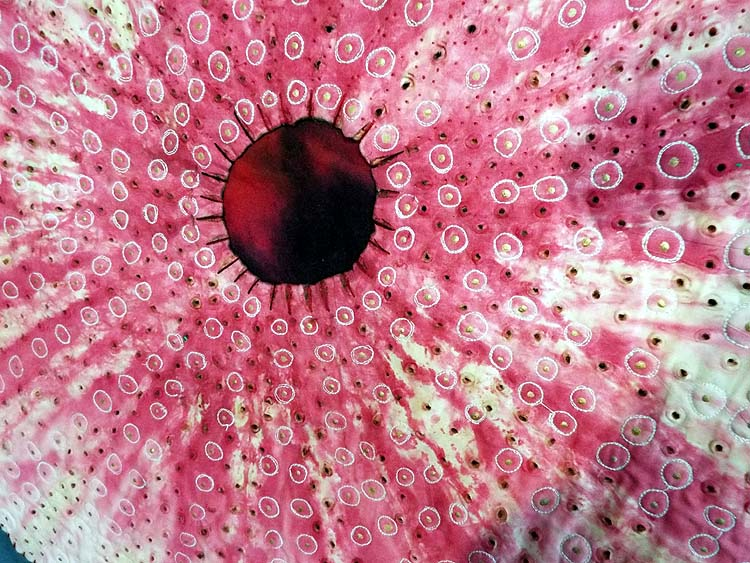 Urchin I (detail) textile
